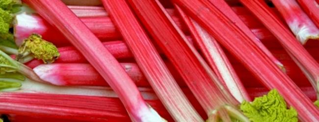 Cut Rhubarb 600 G Snowcrest Foods Ltd
