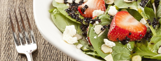 Healthy_Lifestyle_Vegetarians_Header_Snowcrest